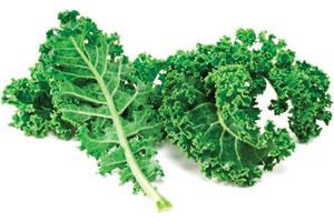 kale-leaf-power-1