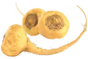 maca-root-1