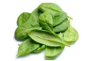 spinach-leaf