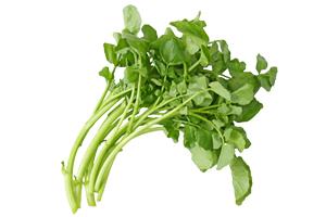 watercress-leaf2
